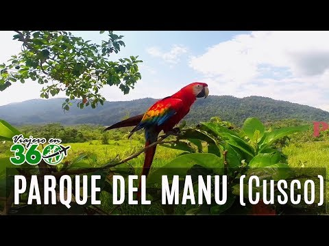 Parque Nacional del Manu | Manu National Park | Cusco - Perú | www.perutravel.tv