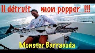 CE BARRACUDA EXPLOSE MON POPPER!, ESPADON AU POPPER!, #popping, pêche au popper, #pêche à mayotte