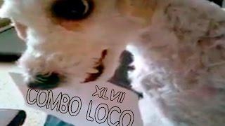 COMBO LOCO XLVII