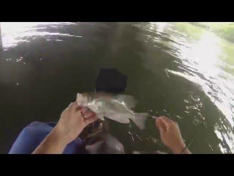 Ray Hubbard Bridge Crappie Fishing 4/26/16