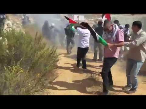 Israeli forces use violence against unarmed demonstrators in Wadi Foukeen