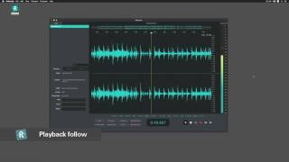 Introducing ReSample - A Sharpened tool for audio editing