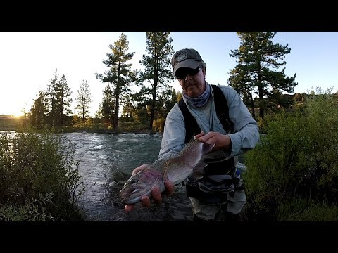Rainbow Trout Fishing. Truckee River California. Spring 2019