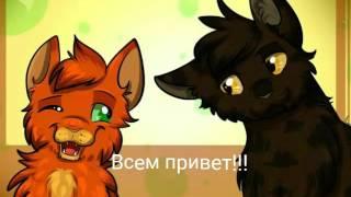 Коты-Воители история Ночноглаза 1 часть