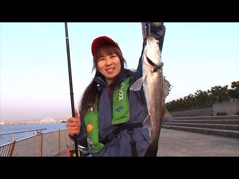 フカセ釣り&エビ撒き釣り 人気の波止で良型ゲット/四季の釣り/2015年5月1日OA