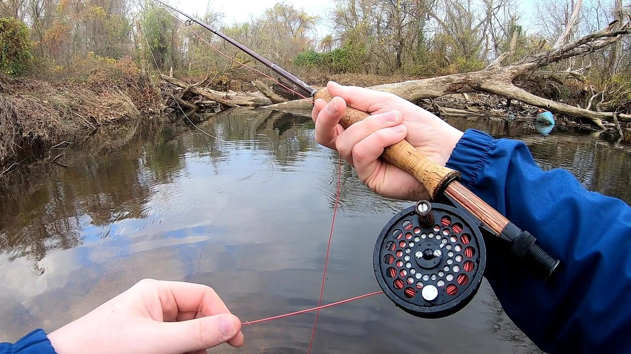 The Best $200 Budget Fly Fishing Outfit? (Leland Starter Trout) - YouTube