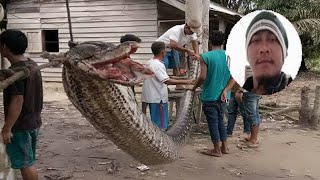 Man survives fight with Giant 23ft PYTHON he encountered on way home from work in Indonesia