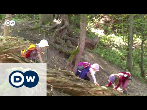 Woodland play nurtures green thinking | Eco-at-Africa