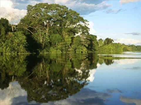 Dori Caymmi - Amazon River II