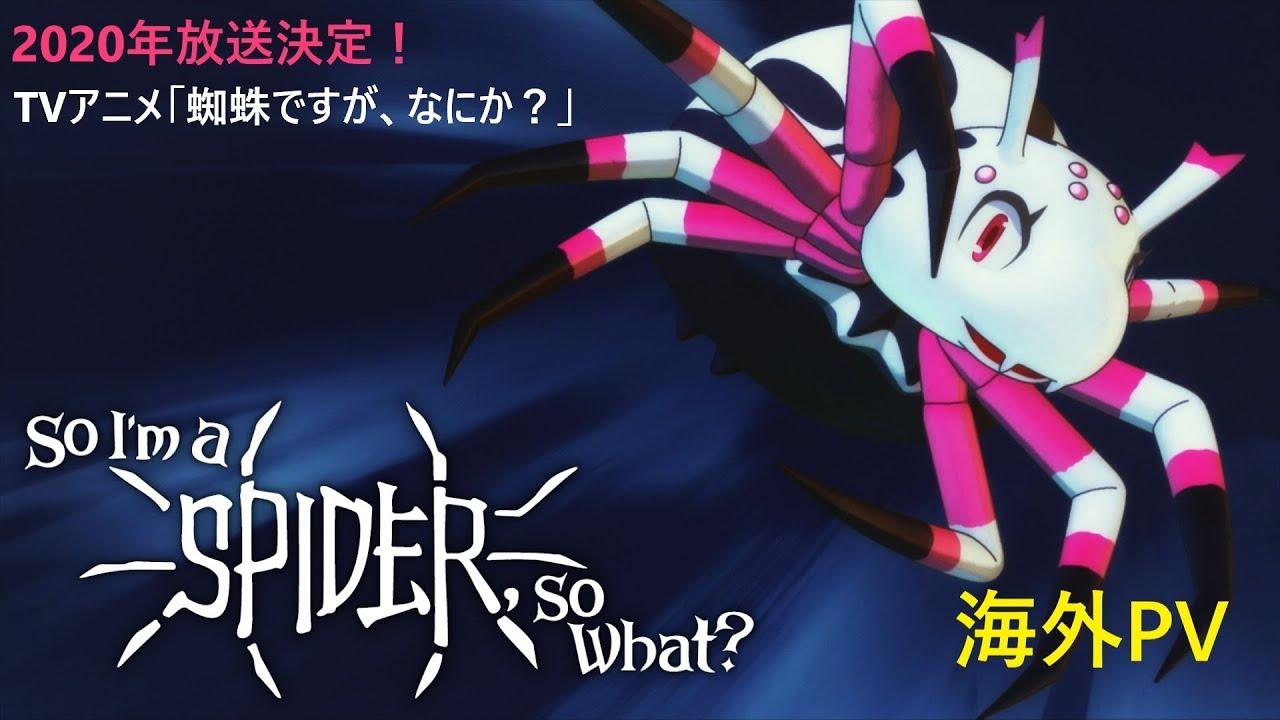 中止 アニメ なにか です 蜘蛛 が