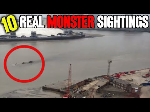 10 REAL Monster Sightings!