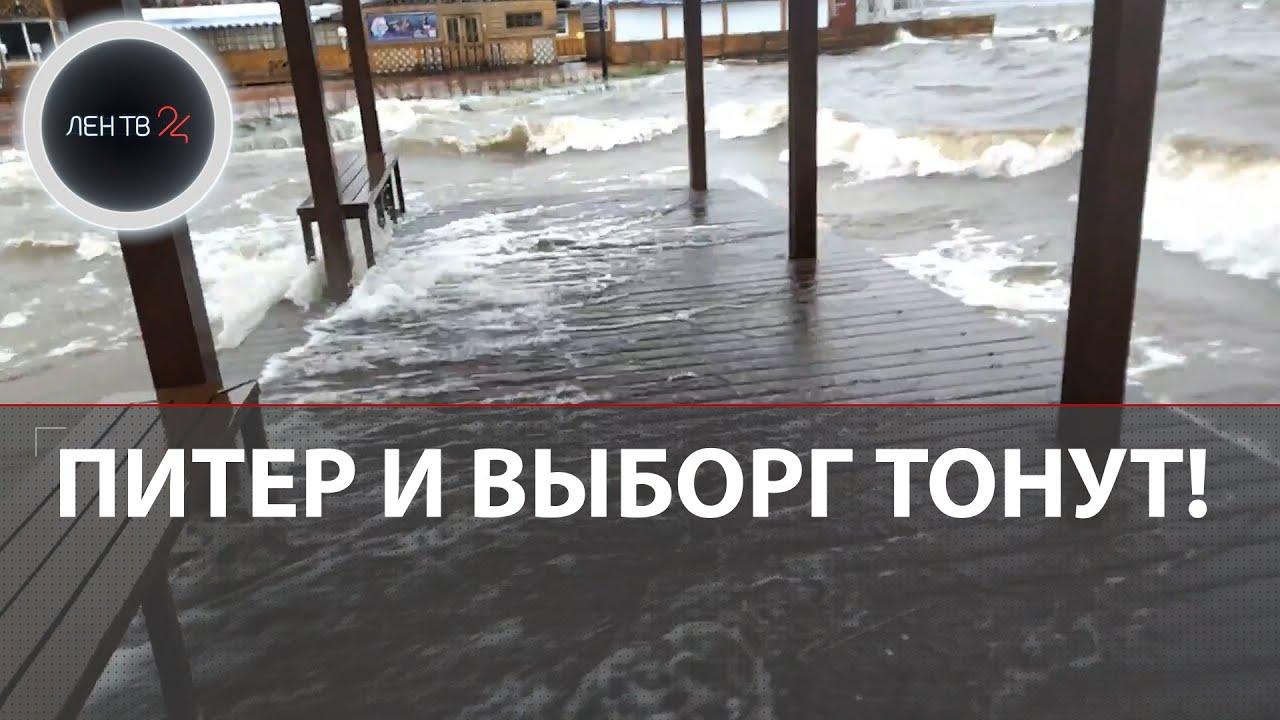 Ураганы Хендрик и Игнатца топят машины и валят деревья Выборг и Петербург в воде