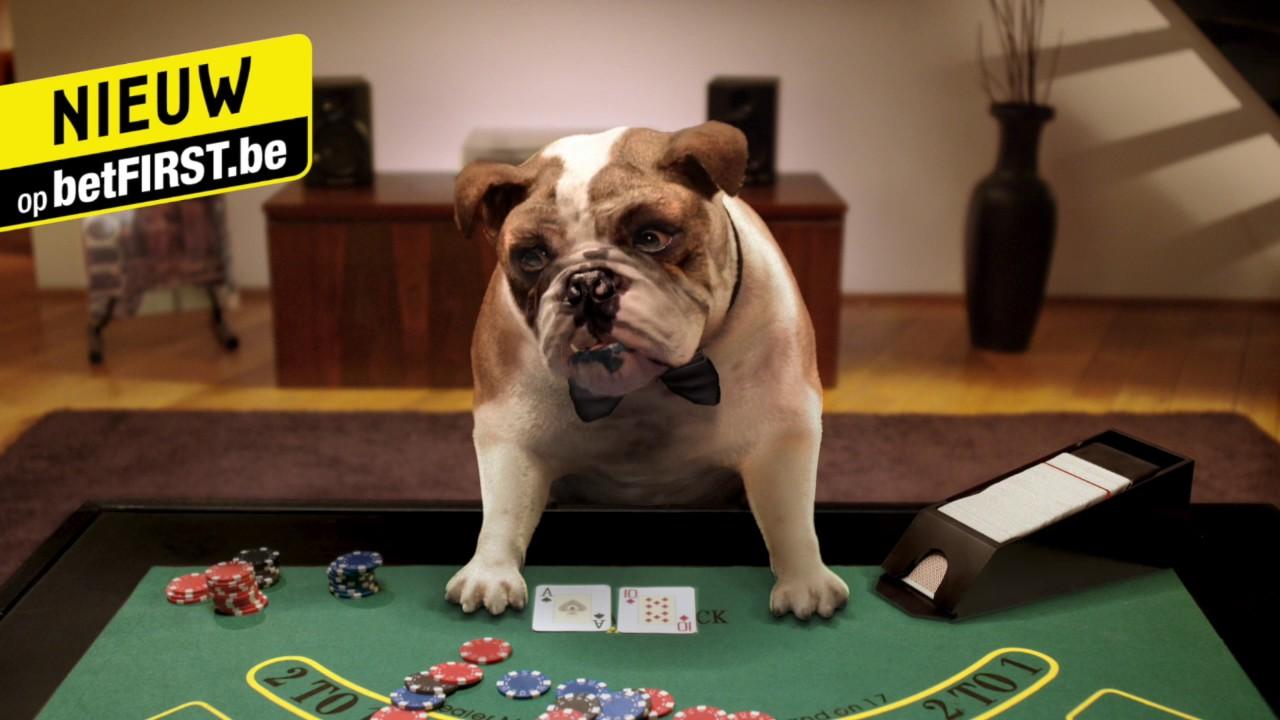 Grand parker blackjack
