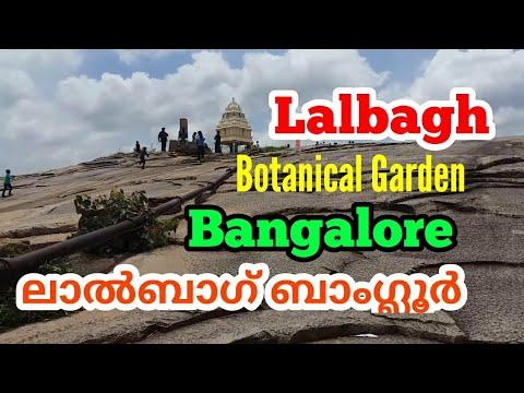Lalbagh Botanical Garden Bangalore vlog