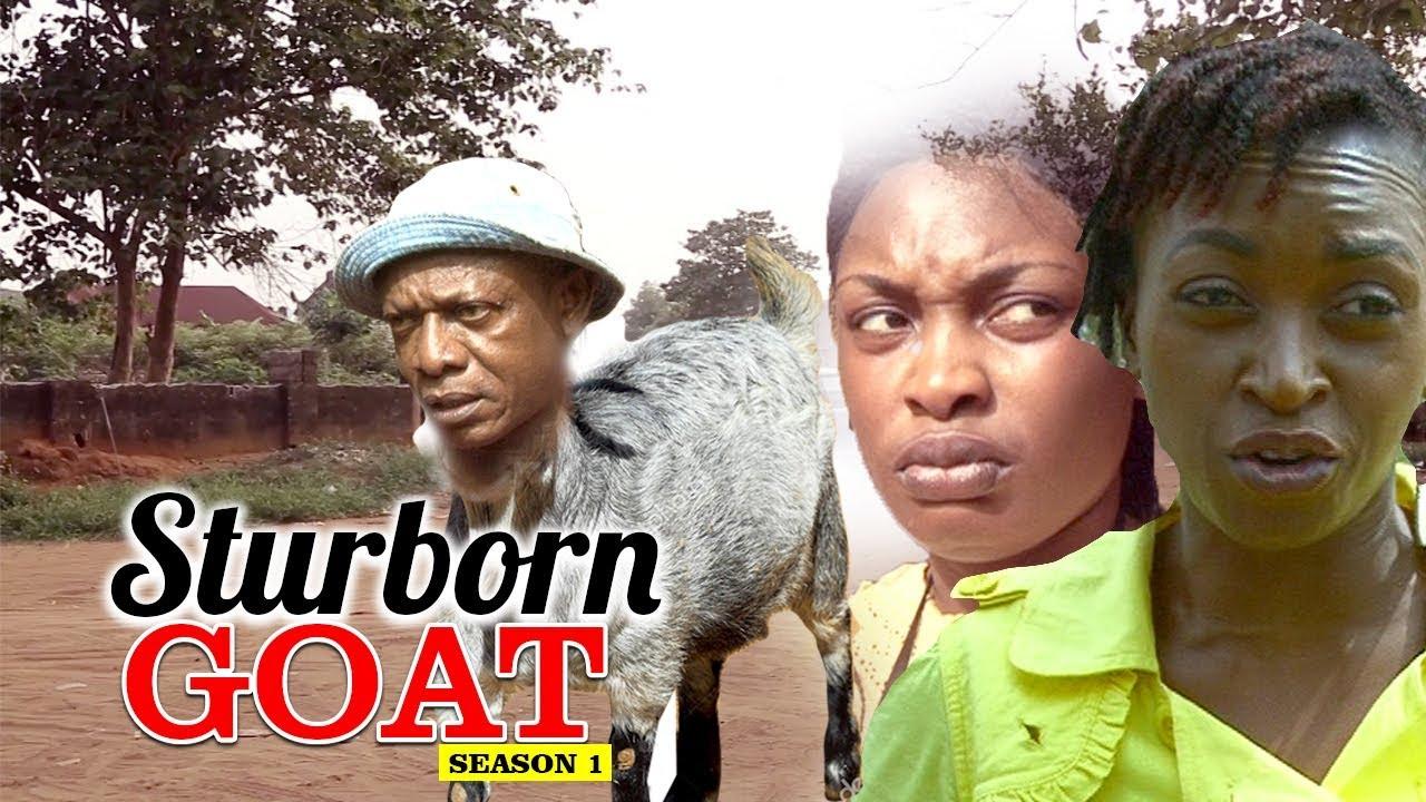 Download STUBBORN GOAT - LATEST NIGERIAN NOLLYWOOD MOVIES - TRENDING NIGERIAN MOVIES
