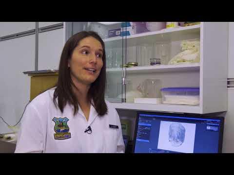 Le laboratoire d'expertise biolégale du MFFP