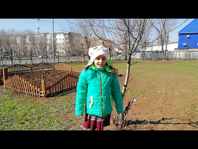Изображение предпросмотра прочтения – ВикторияЖданова читает произведение «Апрель» С.Я.Маршака