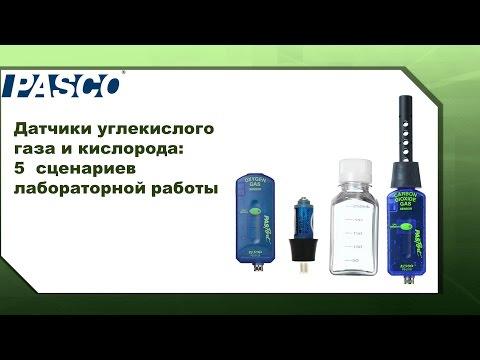 Датчики углекислого газа и кислорода PASCO – 5  сценариев лабораторной работы