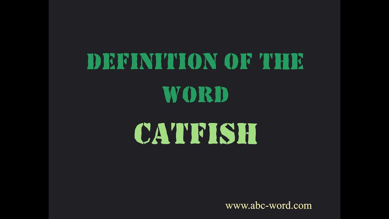 catfish definition