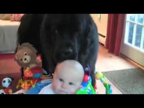 פספוסי תינוקות קורע!!!! מצחוק