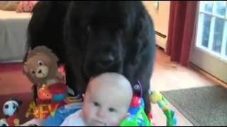 תינוקות שטותניקים