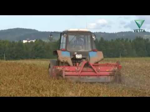 В Пермском крае из-за сухой и жаркой погоды гибнет урожай