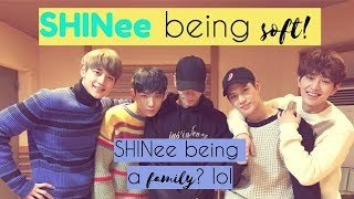 SHINee being soft
