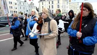Save The Harlan Beagles - Silent March In Brighton (uk) - 09 March 2013