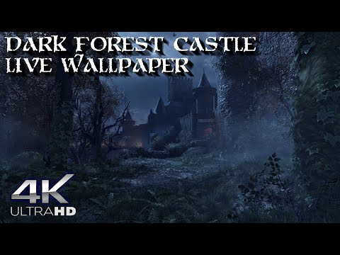 Dark Forest Castle Live Wallpaper 60fps 4k Perfect Loop Youtube