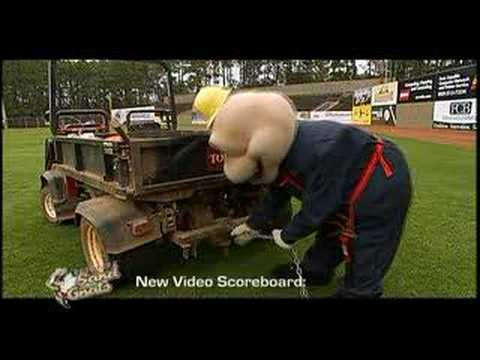 2007 Savannah Sand Gnats Commercials - Renovations