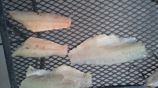 Quick And Easy Way To Fillet Catfish And Bass