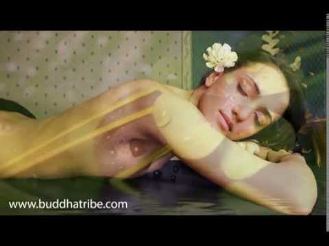 Background Instrumental Music | Serenity Spa Sounds and Music