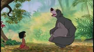 Video Jungle Boek | Liedje: Als Je Van Beren Leren Kan | Disney BE download MP3, MP4, WEBM, AVI, FLV April 2018