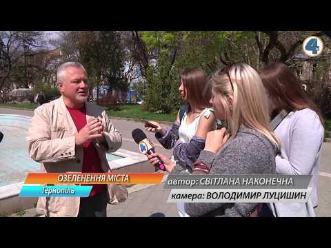 TV-4: Озеленення міста проводять відповідно усіх норм і постанов  Кабміну, - комунальники
