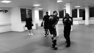 MMA – Mixed-Martial-Arts Seminar in München mit Youri Vansant