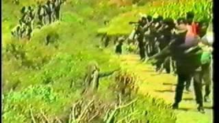 Ethiopian Revolution: EPRDF WOYANE