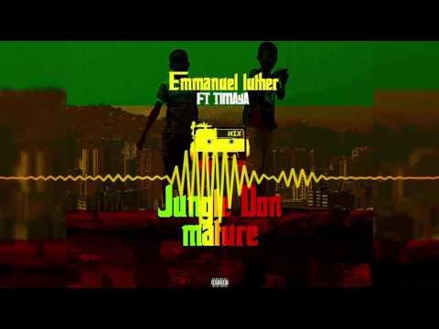Emmanuel Luther | Jungle Don Mature [Official Audio] ft Timaya | Freeme TV