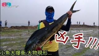 [69jigging] 兇手原來是它們!!??小魚大爆衝之大物現形-鼻頭角200礁釣遊2018/05/台灣69J釣魚俱樂部(69J FishingClub) thumbnail