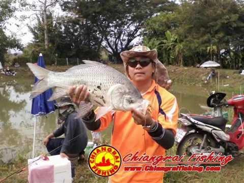 บ่อตกปลาจ่าราญ.wmv