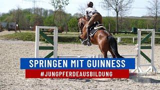[FMA] Guinness wird immer sicherer 🥰🔥 #springtraining