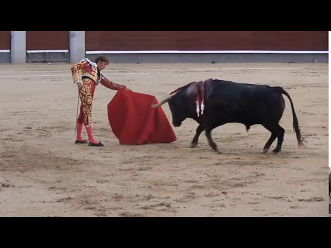 Bullfighting - Bull attacks Horse (documentary)