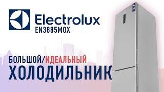 холодильник Electrolux EN 3452 обзор
