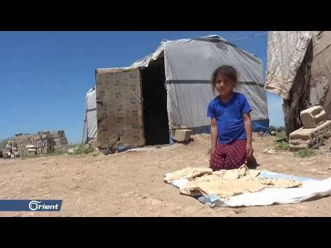 أوضاع إنسانية صعبة تواجه النازحين في المخيمات العشوائية بالحسكة - سوريا  - نشر قبل 5 ساعة