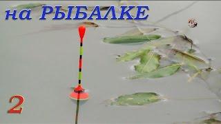 Рыбалка. Видео Зарисовки из моего канала. Ловля на поплавок и донку карася, тарани, окуня, судака