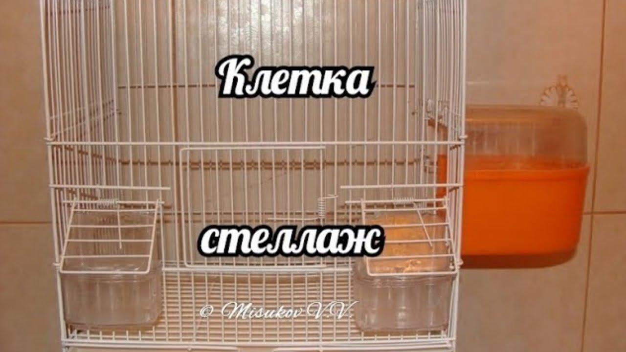 Клетка для хомяка olx. Ua. В клетку для грызуна, хомяка, крысы, морской свинки. Животные » зоотовары. Продам клетку б/у для хомяка. Животные.