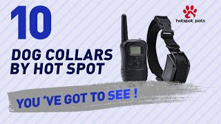 Dog Collars By Hot Spot // Top 10 Most Popular
