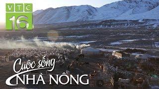 Khám phá Mông Cổ: Bí ẩn cuộc sống du mục dưới trời âm 30 độ | VTC16