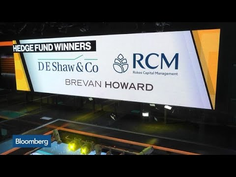 2019 Hedge Fund Success Stories: D.E. Shaw, Rokos Capital