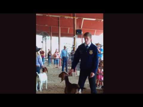 2016 Owyhee County Fair Homedale, ID