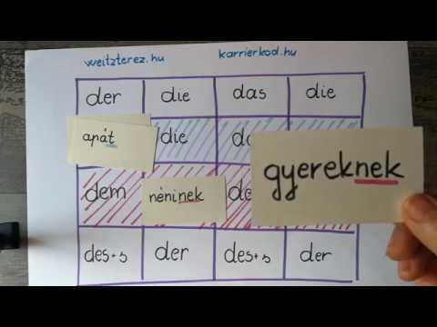 Német tárgyeset - Nyelvtani esetek a németben